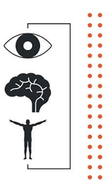 Strobe Training Vision Mind Body Proprioception Vestibular Systems