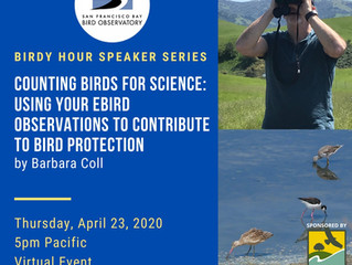 Counting Birds for Science - and Zoom