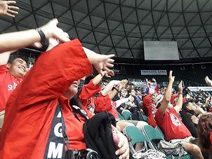 HI Regional crowd1.jpg
