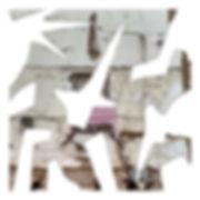 ASXHMO_VisualEssay_4.jpg