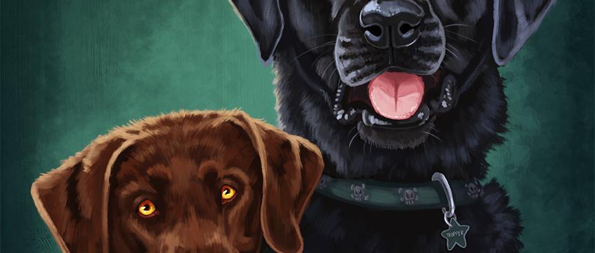 dogs_portrait_pub.png