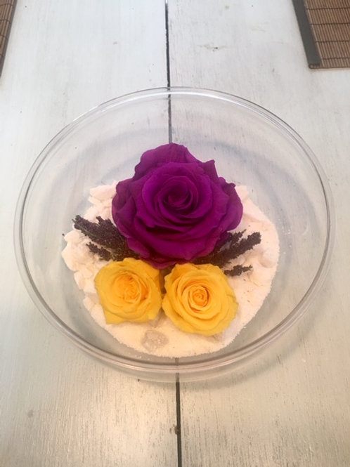 Combo bowl rose arrangement