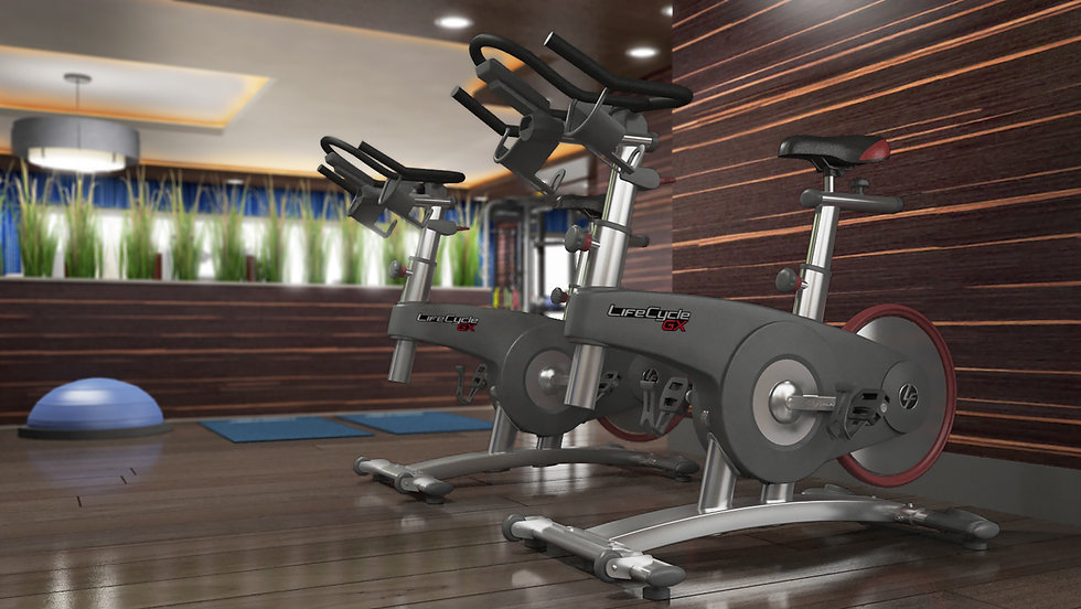 Life Fitness GX Exercise Bike in room