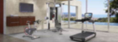 High quality Life Fitness gym in stunning house over looking the sea
