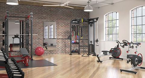 Life Fitness strength and cardio equipment in warehouse apartment