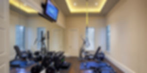 Precor fitness equipment with mirror's on wall