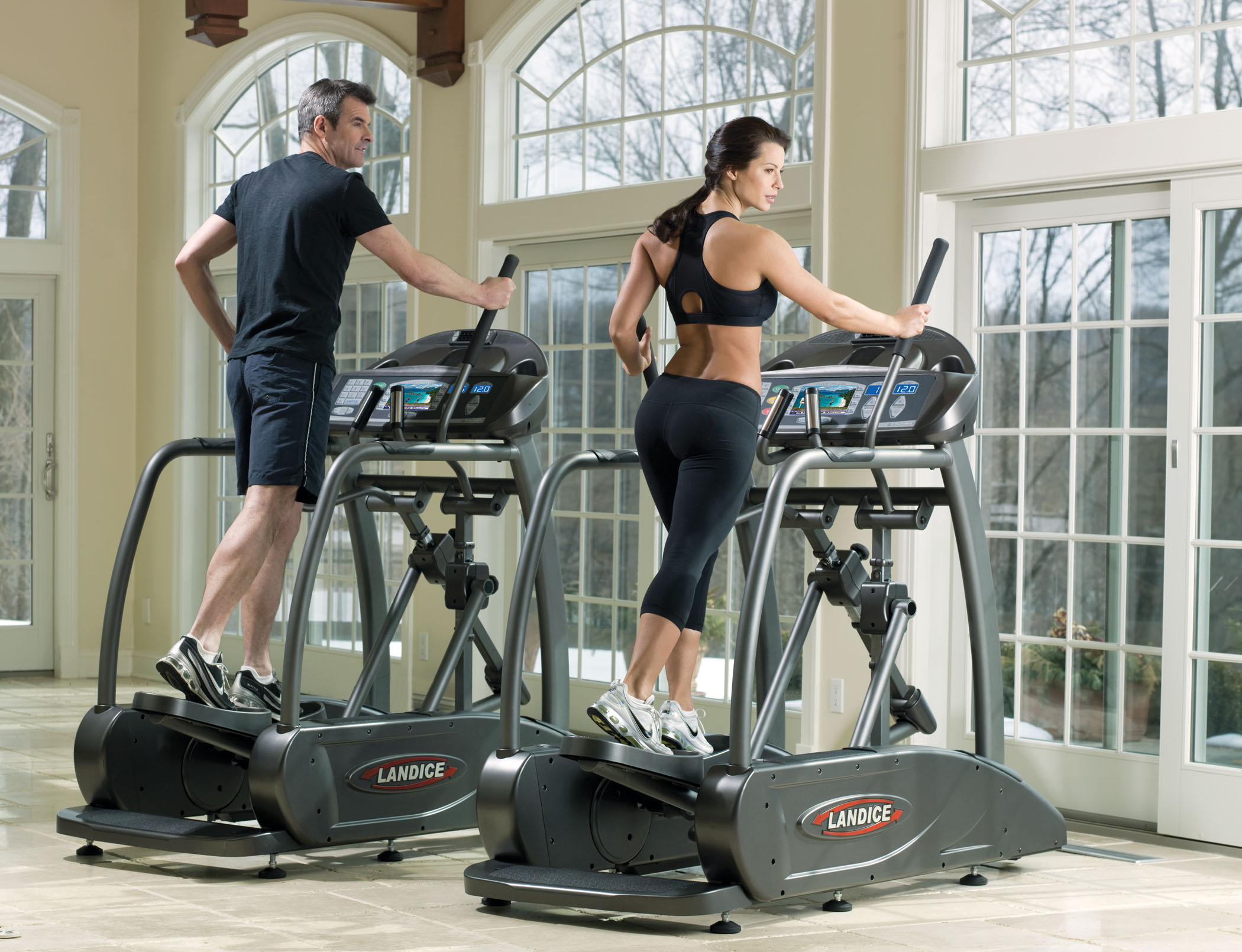 Landice Elliptical Two Models