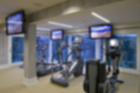 Life Fitness fitness equipment in home gym