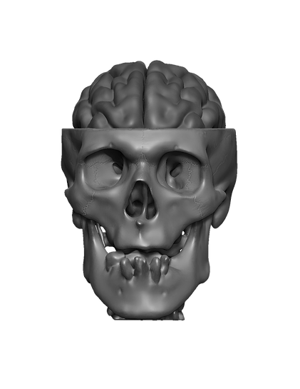 black and white skull2.png