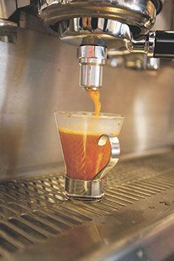 rooibos-liquid2.jpg