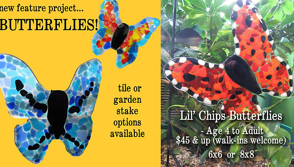 butterfly lil chips.jpg