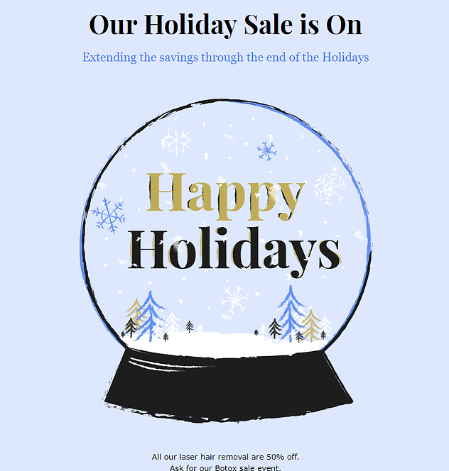Holidays sale.png