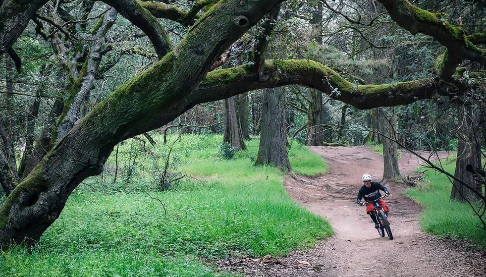 Zealot Cycleworks - Adventure Ride