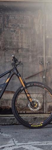 Zealot Cycleworks - Gold Chain Ripmo4