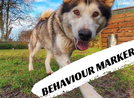 Behaviour Markers!!