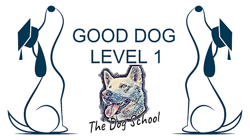 The Dog SchoolIOSBackground.png
