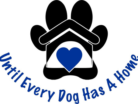 Until Every Dog Has A Home - The Back Story ...