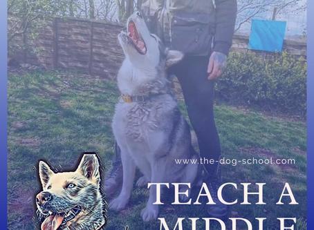 Teach Your Dog A 'Middle'