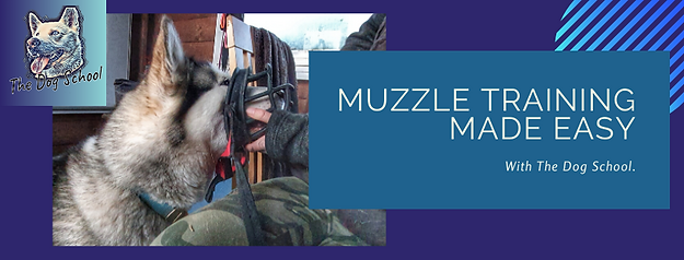 Muzzle Training Made Easy .png