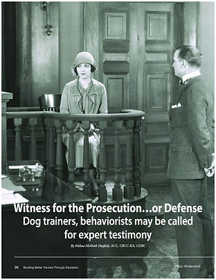 Witness for the Prosecution Hatfield_Pag