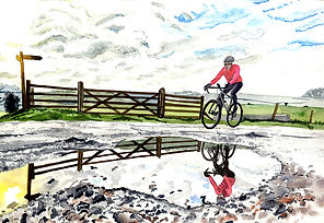Reflective ride.jpg