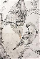 AH-BRITISH BIRDS.jpg