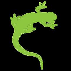 PNG Gecko only transparent bkgrnd.png