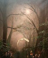Owl in the Woods.jpg
