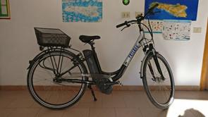 Bici elettrica Frisbee Rocky 1 con motor