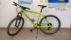 Mountain bike gialla.jpeg