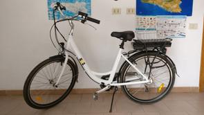 Bici Elettrica NWG.jpeg