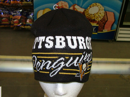Pittsburgh Snow Cap