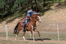 Competitive Horse Archery