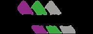 metalsider logo.png