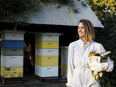 Rent a Beehive