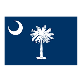 South Carolina solar companies SC solar panel incentives and rebates