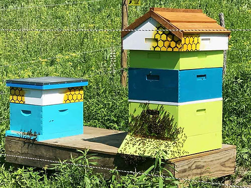 Setup Fee- Residential Hosted Beehive
