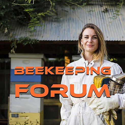 Beekeeping Forum Beginners to Experts