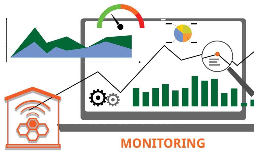 Beehive monitoring- Hyper Hyve