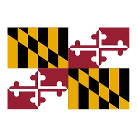 Maryland solar companies MD solar panel incentives and rebates