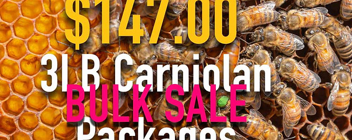 Carniolan 3 LB. Bee Package