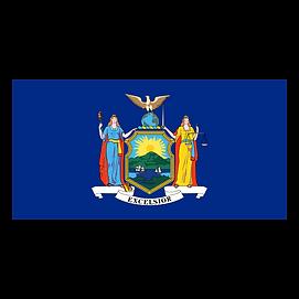 New York solar companies NY solar panel incentives and rebates