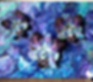 3 ORCHIDS.jpg