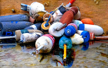 Bouys In Sand