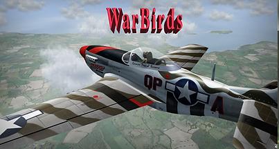 Warbirds.png