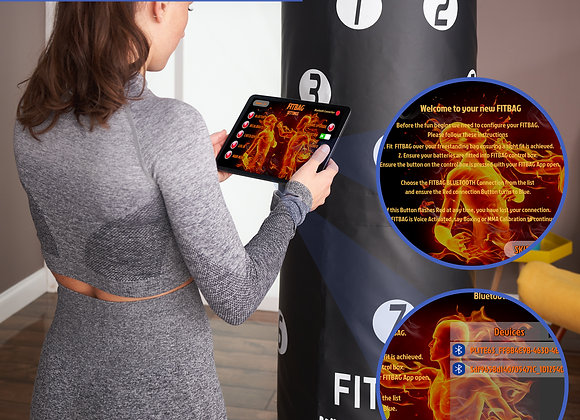 Fitbag The fully interactive fight system