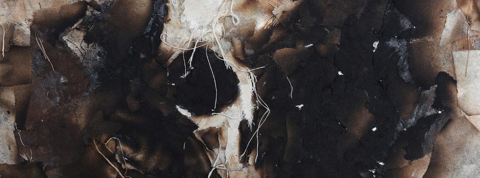 Skull_Study_detail3.jpg