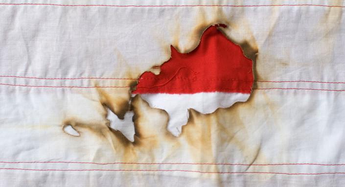 flag2_detail4.jpg