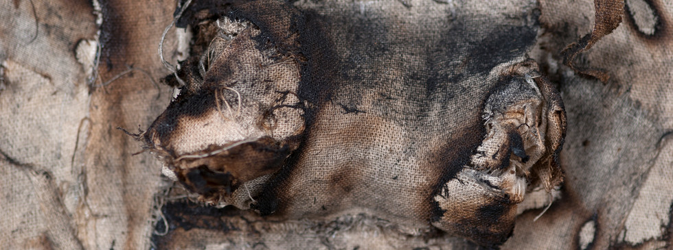 Ashes_detail8.jpg