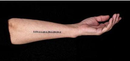 tattoolandscape.jpeg